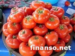 Лечить рак помогут помидоры - ученые США