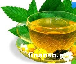 Ученые: Регулярное употребление зеленого чая снижает развитие старения