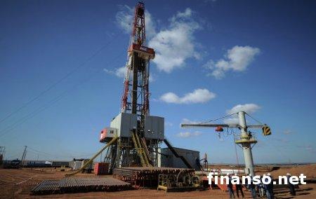 В 2014 году в Украине начнется добыча сланцевого газа - выводы