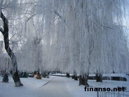 Синоптики: зима в Украине будет очень долгой и снежной